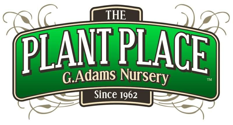 plant place jpg