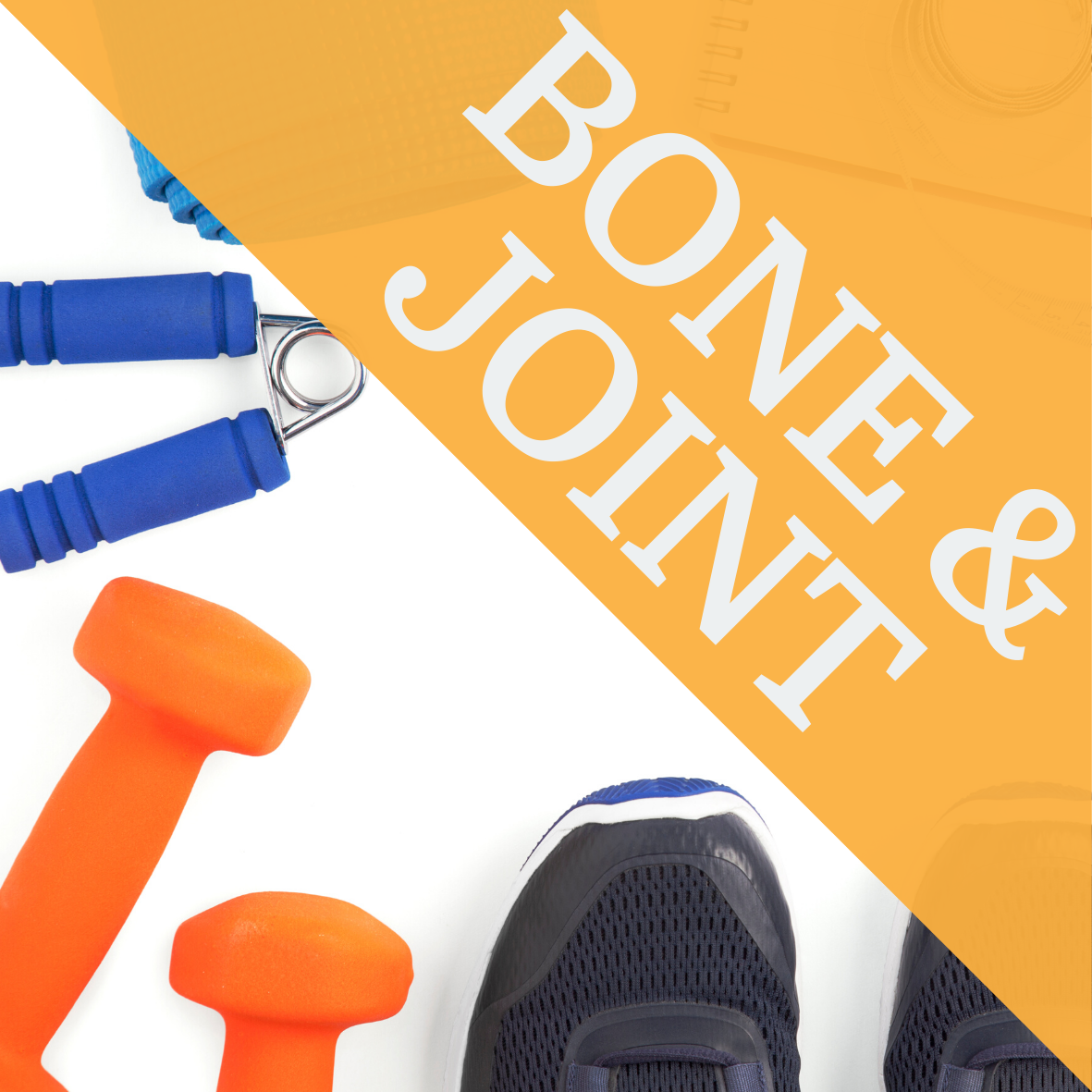 bone and joint